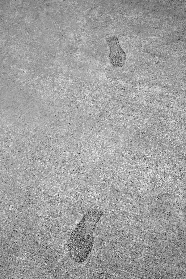 Free Footsteps Footprints Frozen In Hard Concrete Cement Royalty Free Stock Photography - 55473097
