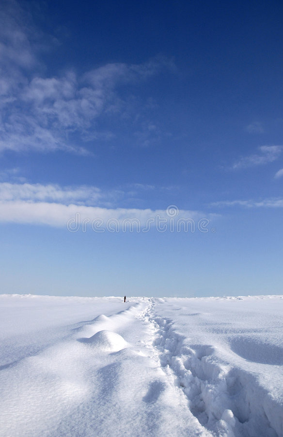 Free Footsteps On Snow 01 Royalty Free Stock Photography - 4996217