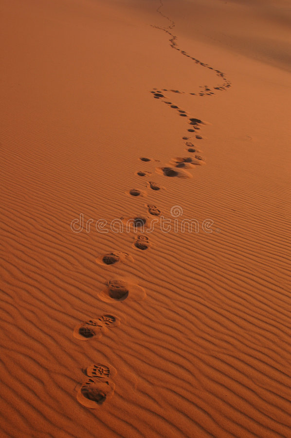 Footsteps in the Sahara Desert stock photography