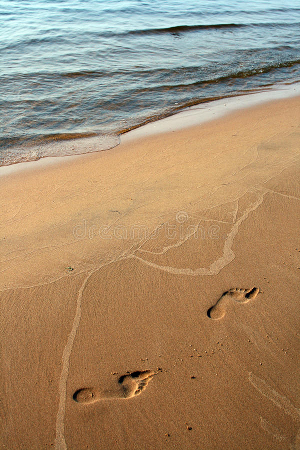 Download Footsteps on the sand stock photo. Image of footsteps - 21873570