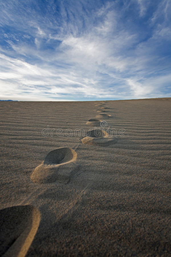 Download Footsteps in the sand stock photo. Image of blue, arid - 28754004