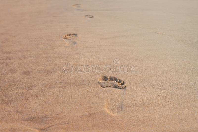 Footsteps in the sand of the beach of Carcans-Plage. In the south west of France royalty free stock photo
