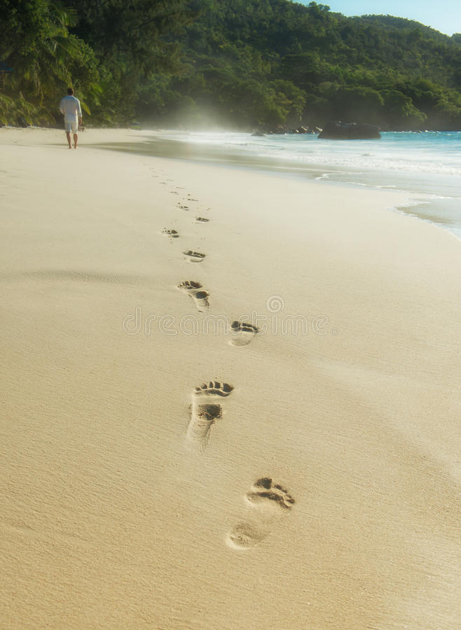 Footsteps in the sand. On the Seychelles royalty free stock photo