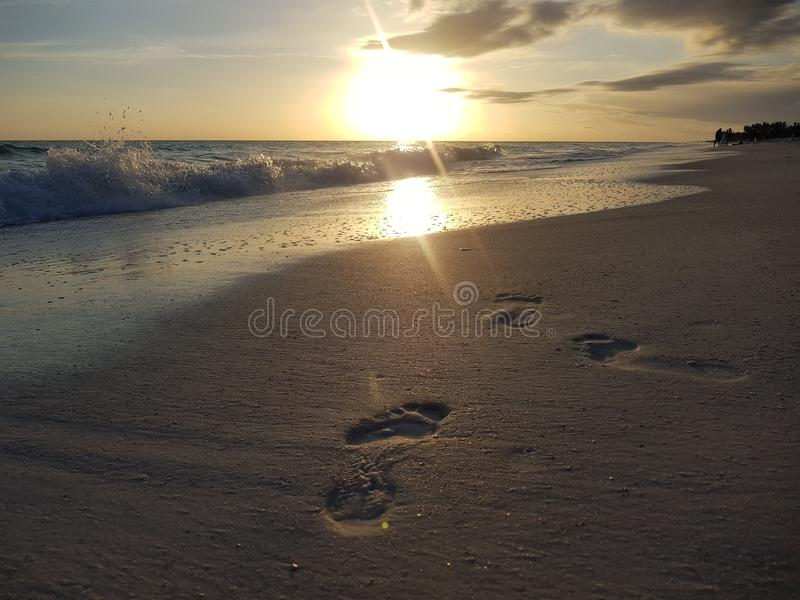 Footsteps in the sand. At sunset royalty free stock photos