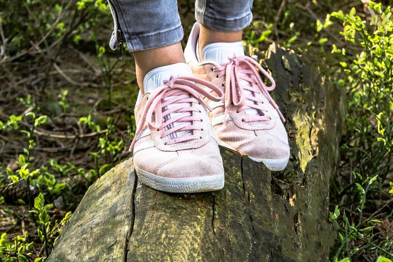 Footwear, Shoe, Grass, Tree royalty free stock images