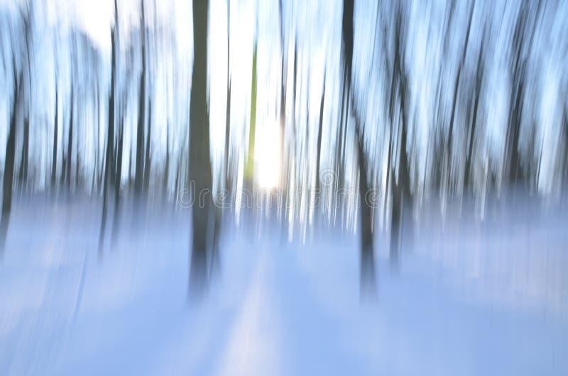 Forêt abstraite dans l'hiver image stock