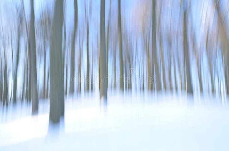 Forêt abstraite dans l'hiver photo stock