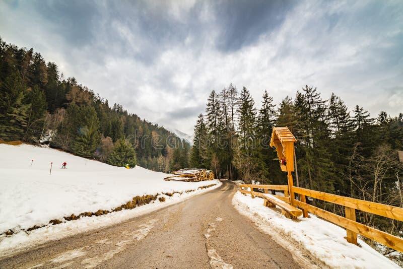 Forêt alpine de croisement de chemin de terre photographie stock libre de droits