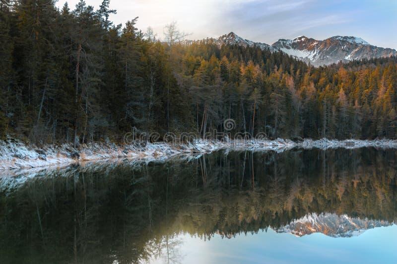 Forêt alpine et Alpes neigeux près de lac Eibsee photographie stock