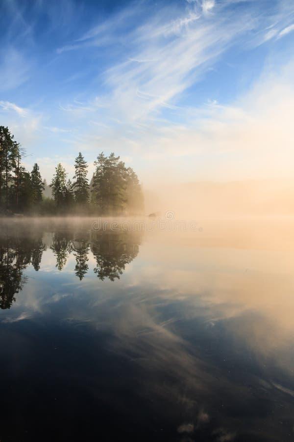 Forêt au bord de lac au matin brumeux image stock