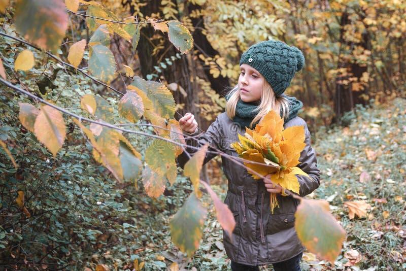 Forêt Autumn Park d'automne Humeur d'automne Petite fille avec un bouq photographie stock libre de droits