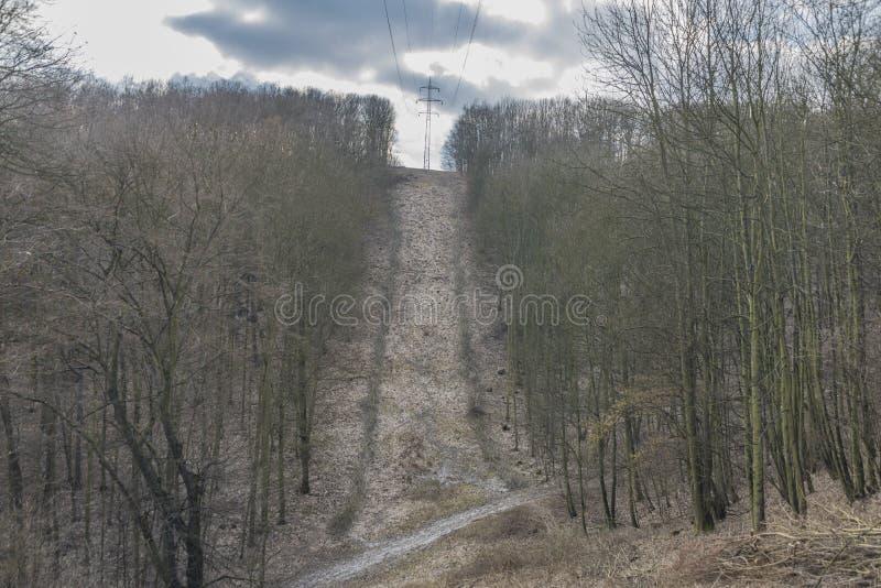 Forêt avec les poteaux électriques dans Usti NAD Labem photo libre de droits