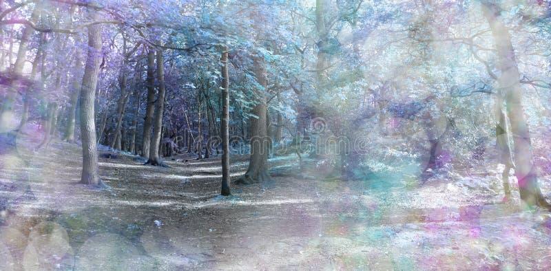 Forêt bleue fantasmagorique d'imagination photo stock