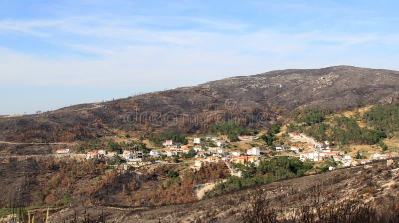 Forêt brûlée autour de village au Portugal photographie stock libre de droits