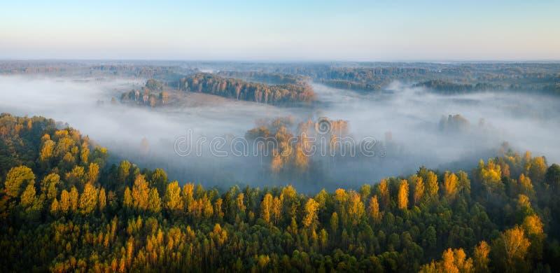 Forêt brumeuse et lever de soleil de silhouette d'automne avec le rayon de soleil, séance photos par le bourdon photos libres de droits