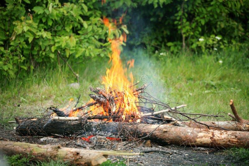 Forêt d'été du feu de feu de camp de feu images libres de droits