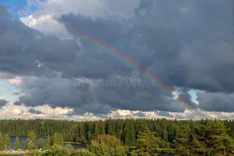 Forêt d'arc-en-ciel de ciel image stock