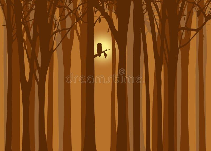 Forêt d'automne d'illustration de Veille de la toussaint avec le hibou photo stock