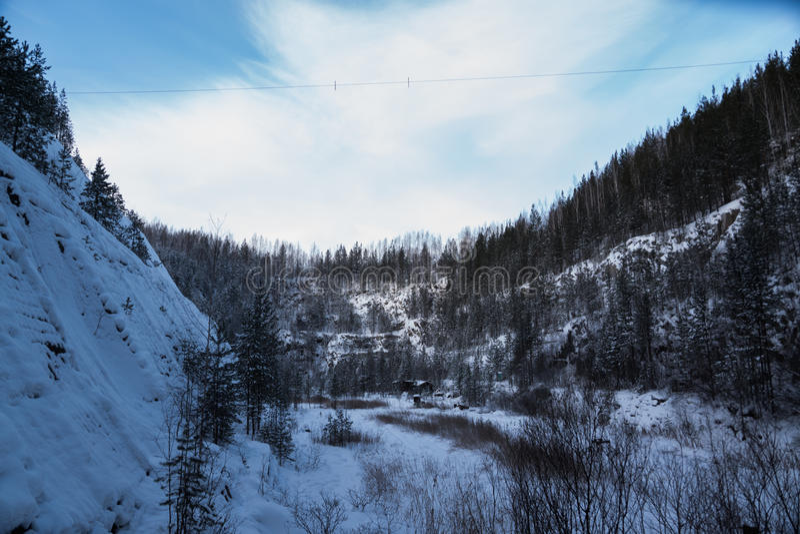 Forêt d'Ural photos stock
