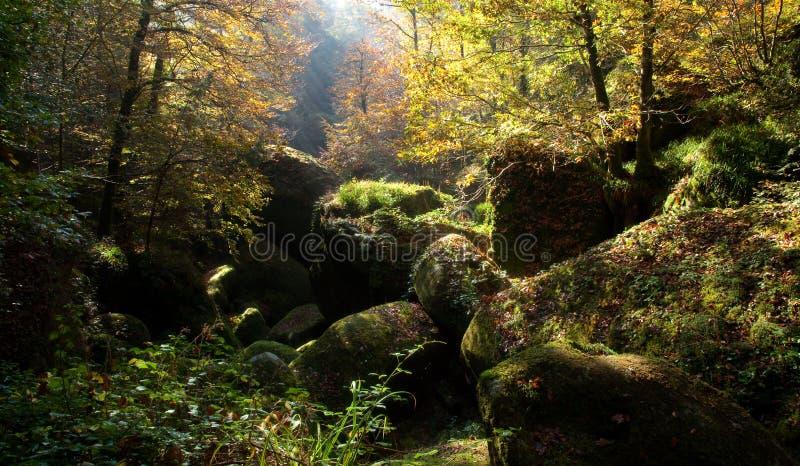 Forêt de Huelgoat photographie stock