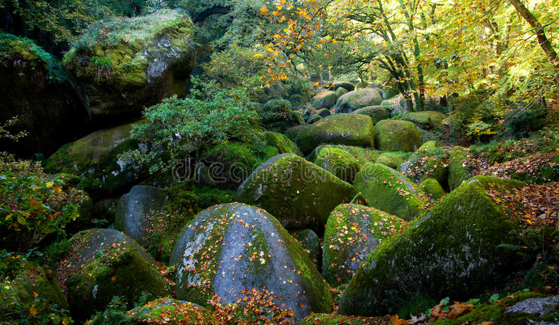 Forêt de Huelgoat image stock