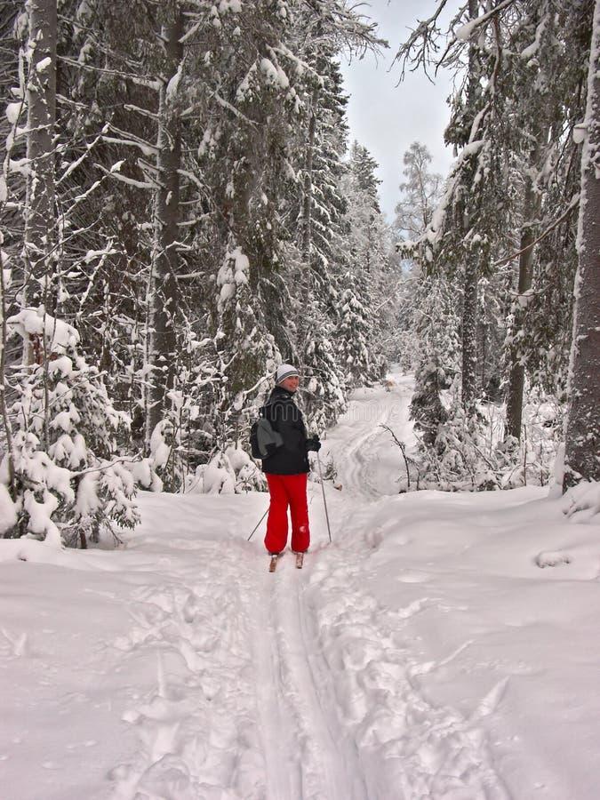 Forêt de l'hiver. Femme heureux images stock