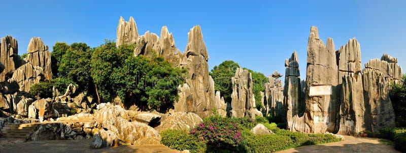 Forêt de la pierre de Chine photo libre de droits