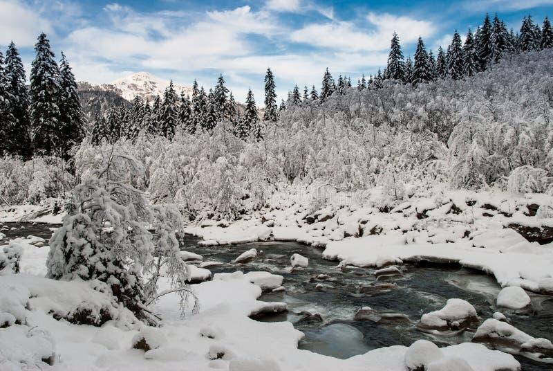 Forêt de Milou photographie stock