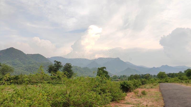 Forêt de montagne de village images libres de droits