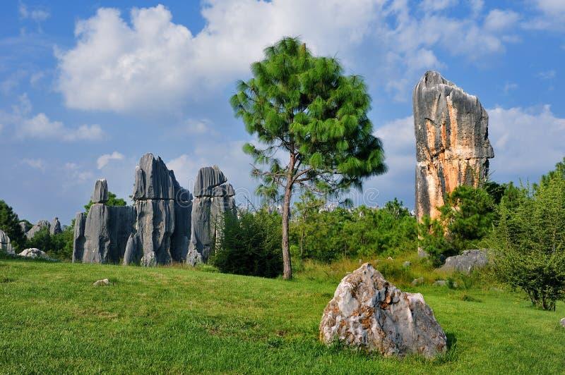 Forêt de pierre de Chine images stock