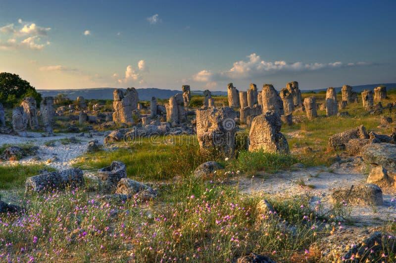 Forêt de pierre de phénomène de nature, kamani de la Bulgarie/Pobiti/ photos libres de droits