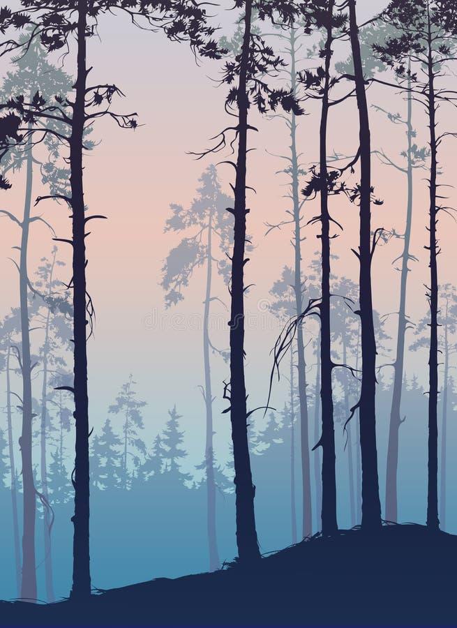 forêt de pin illustration libre de droits