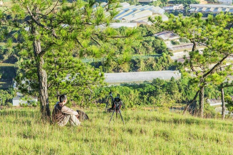 Forêt de pin dans le Lat du DA image stock