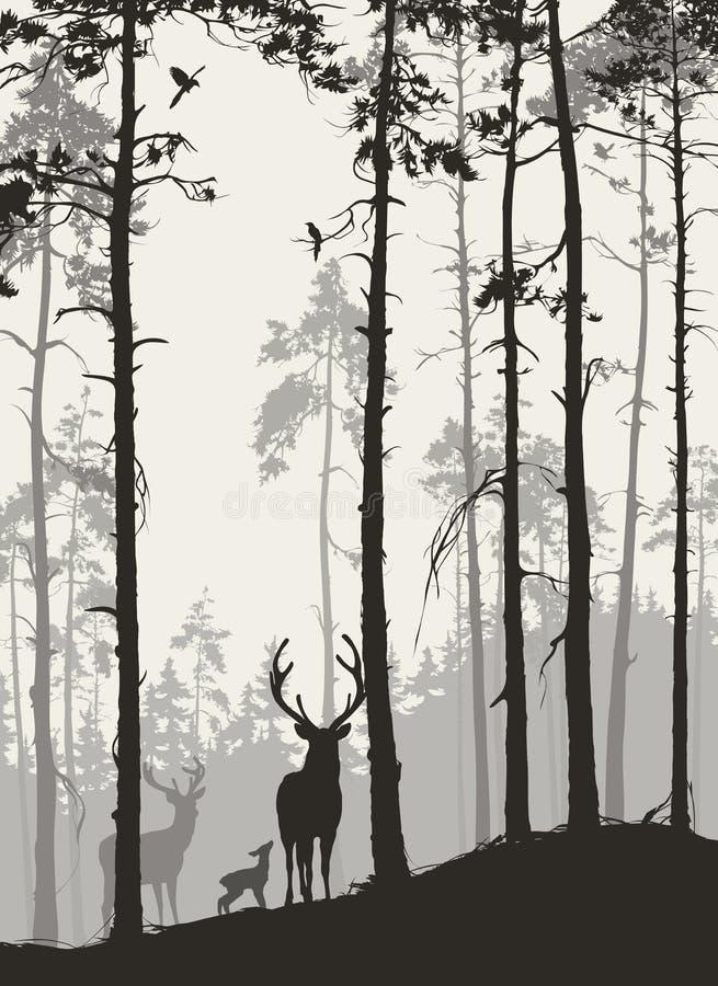 Forêt de pin de а avec une famille des cerfs communs et des oiseaux illustration de vecteur