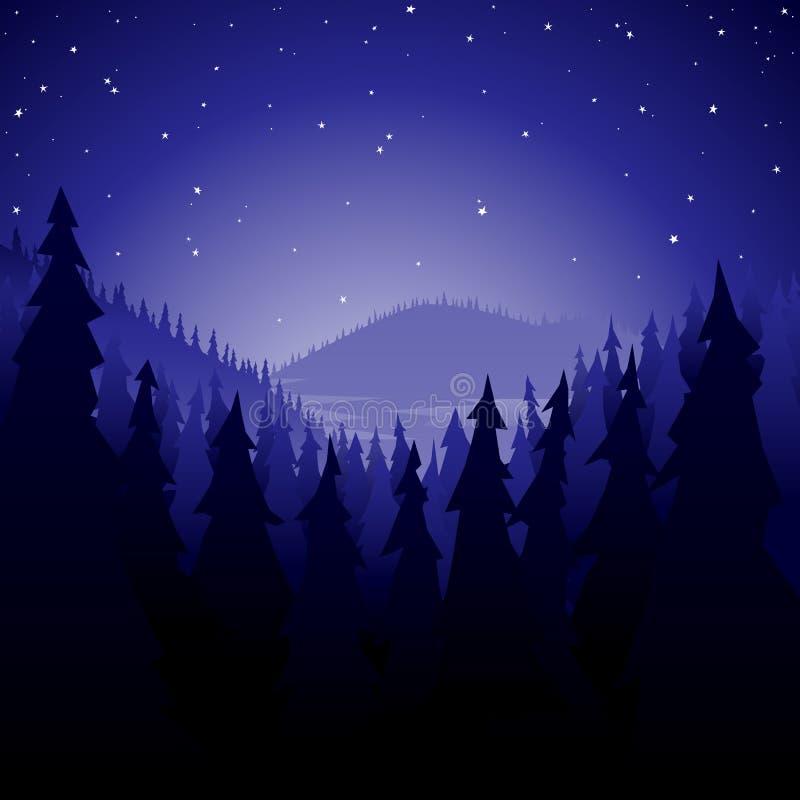 Forêt de pin la nuit