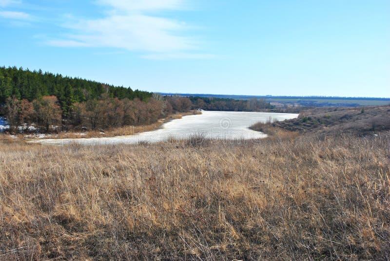 Forêt de pin, saules sur les collines, roseaux putréfiés sur le rivage du lac avec de la glace de fonte, sur un fond de ciel bleu photo stock