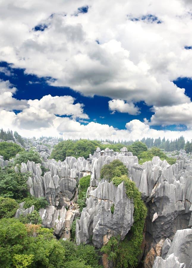 Forêt de roche près de ville de Kunming image libre de droits