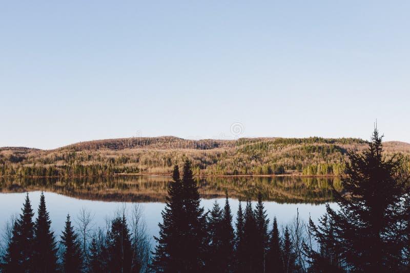 Forêt de vue et montagnes et neige étonnantes photos libres de droits