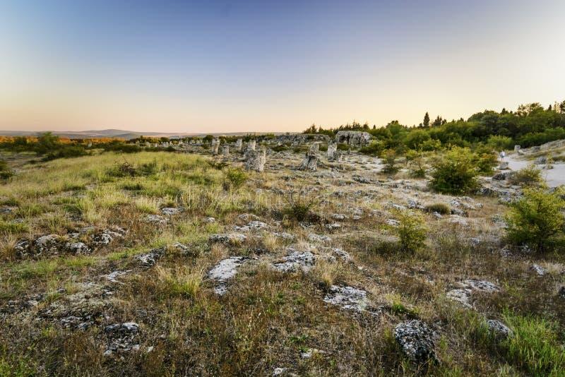 Forêt en pierre à Varna image libre de droits