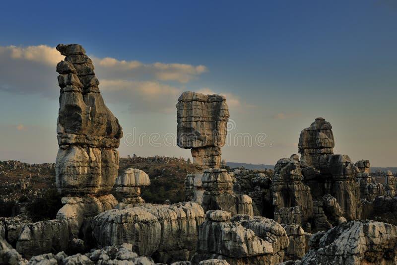 Forêt en pierre image stock