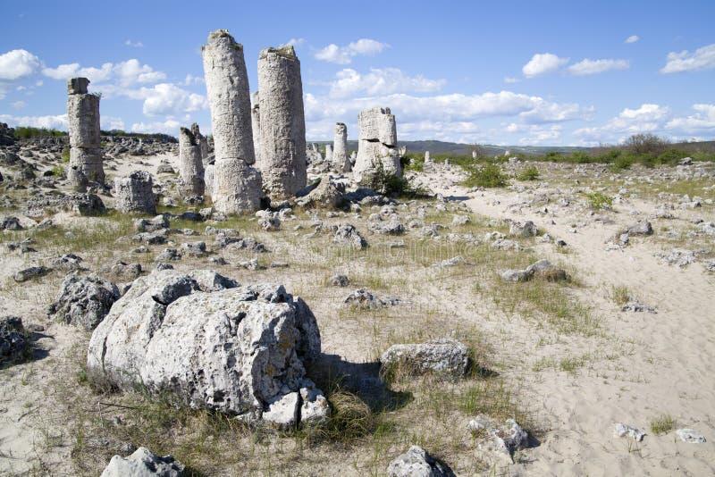 Forêt en pierre près de Varna, Bulgarie image stock