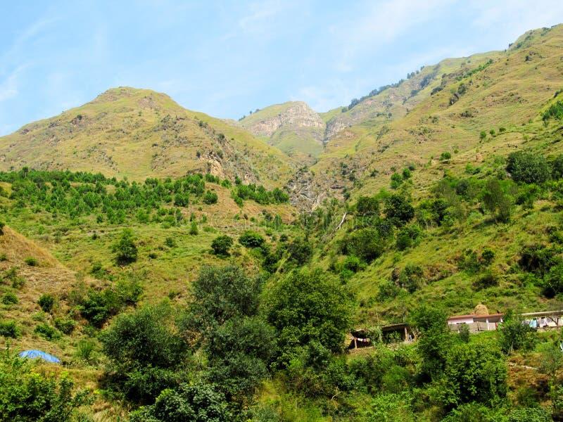 Forêt et collines images libres de droits