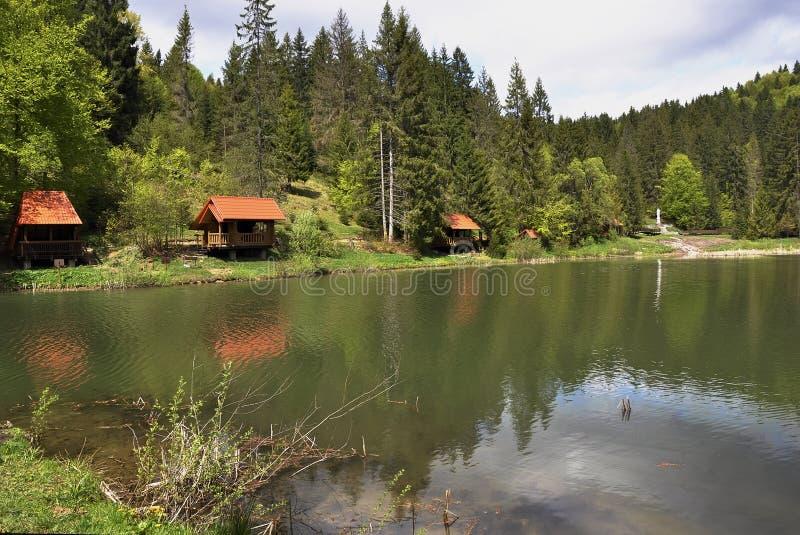 Forêt et lac de chute dans les montagnes carpathiennes photo stock