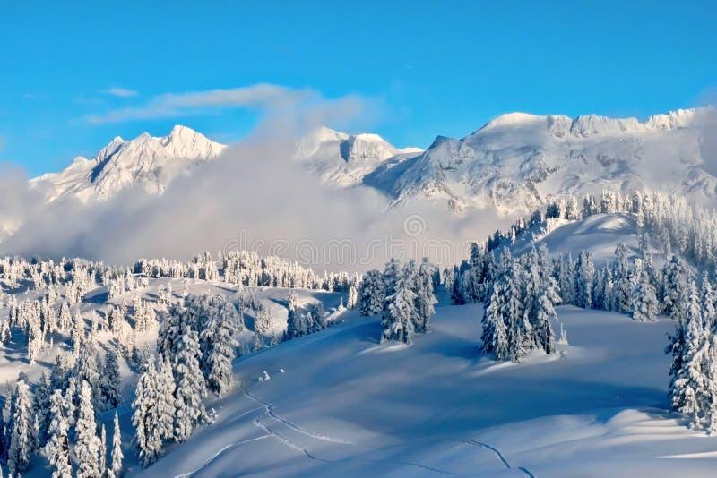 Forêt et montagnes de ladscape d'hiver couvertes de neige et de gel après les chutes de neige lourdes image stock
