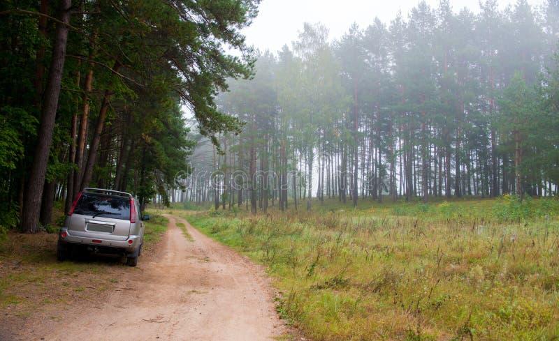 Forêt et voiture brumeuses photographie stock