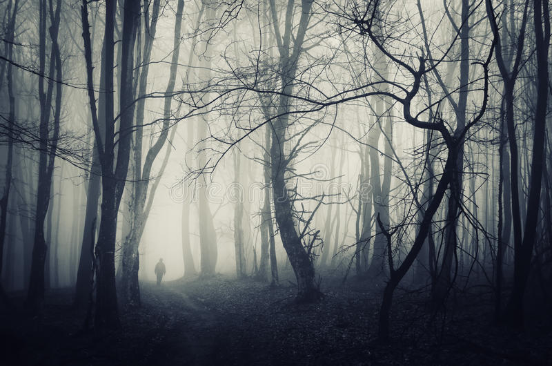 Forêt fantasmagorique avec l'homme marchant sur un chemin foncé images stock