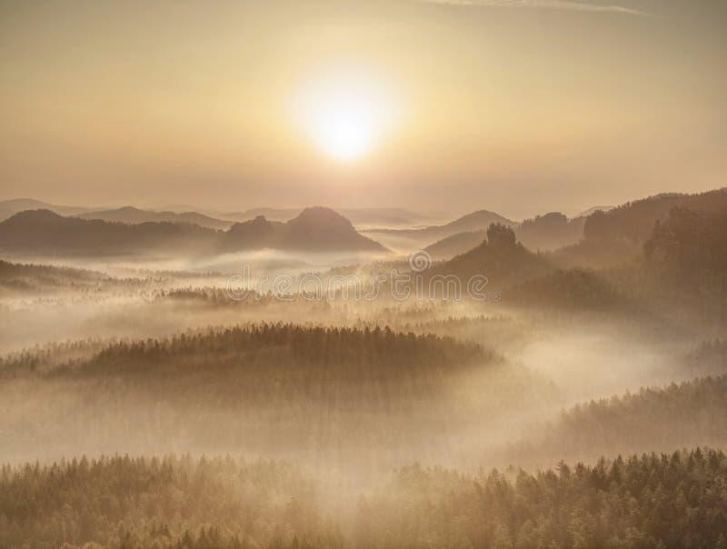 Forêt magique d'automne avec des rayons du soleil dans le matin photo stock