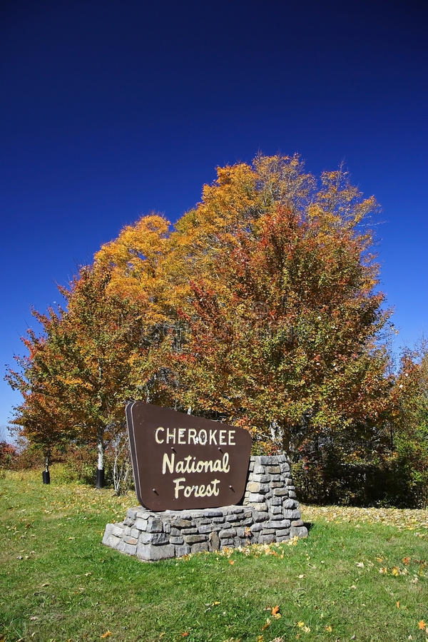 Forêt nationale cherokee image stock