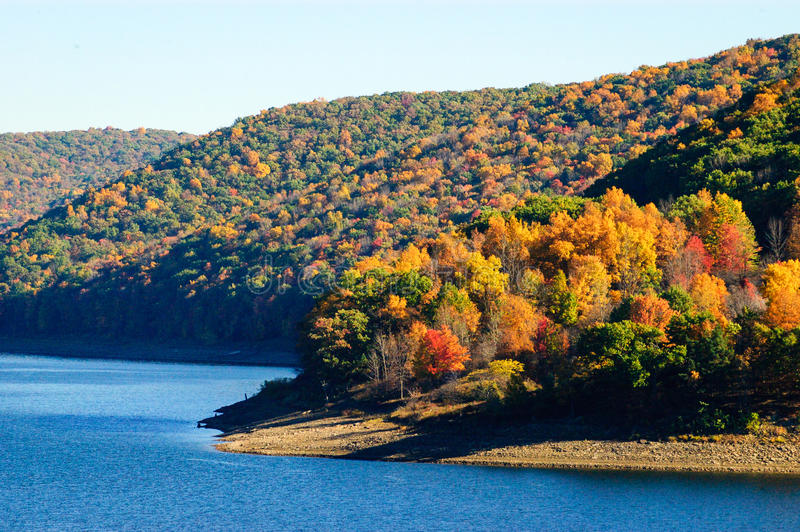 Forêt nationale d'Allegheny images stock