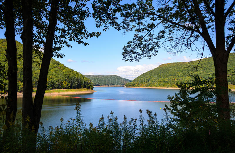 Forêt nationale d'Allegheny photo stock